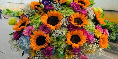 Chọn hoa tặng khai trương cửa hàng